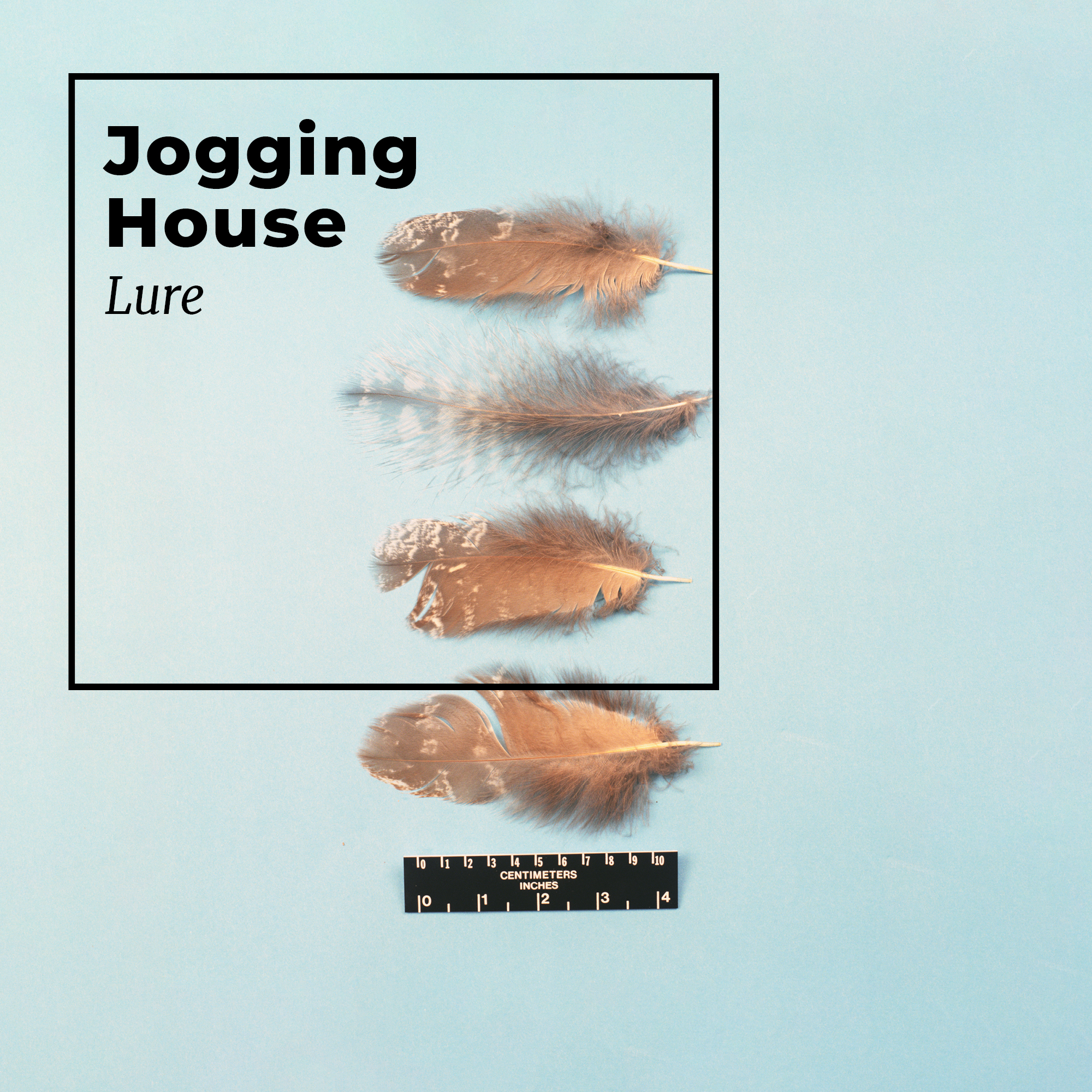 A review of the album Lure, by hopeful ambient artist Jogging House.